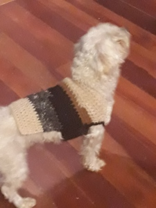 alpaca dogcoat (small) $30 NZD